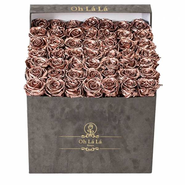 La Grande Square - Chocolate Gold rose - Oh Lá Lá Roses
