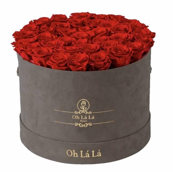 La Grande Round - Red rose - Oh Lá Lá Roses
