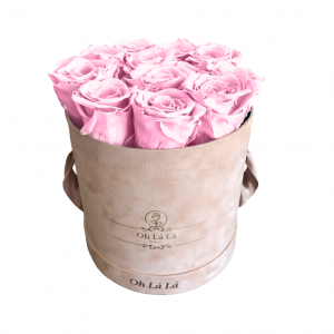 Lá Petite Round - Light Pink Roses - Oh Lá Lá Roses