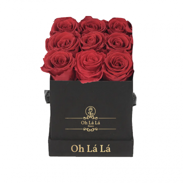 La Petite Black - Red rose - Oh Lá Lá Roses