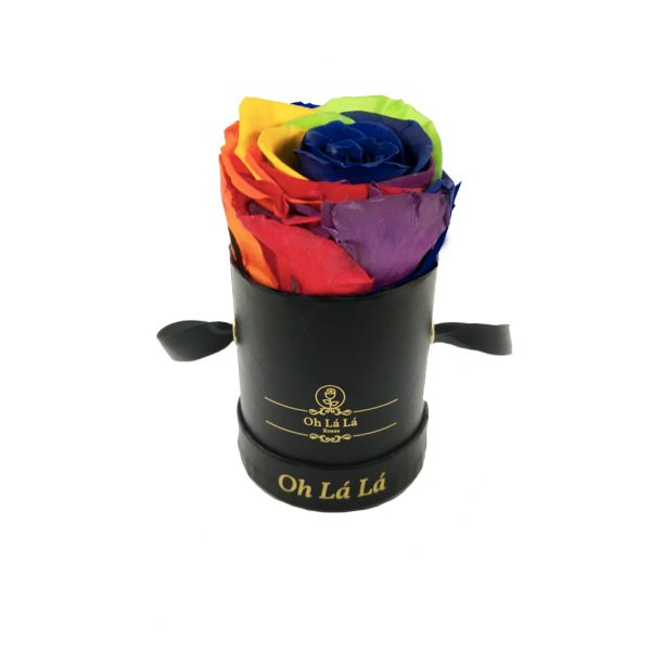 Rainbow Rose - Oh Lá Lá Roses