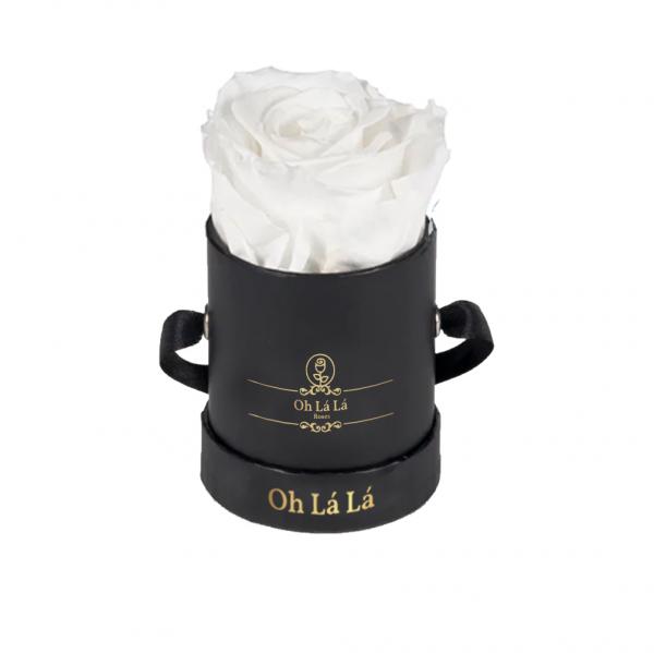 La Mini Black - White rose - Oh Lá Lá Roses